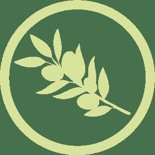 icono denominacion de origen